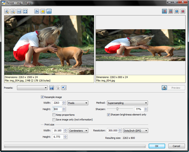 Basic picture resizing window