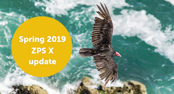 The Spring 2019 ZPS X Update